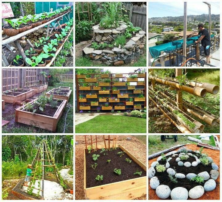 Gardening ideas garden pinterest for Fun vegetable garden ideas