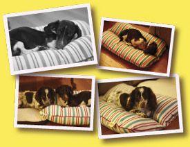 Bunbed - Hot Dog Bun Shaped Dog Beds: http://www.bunbed.com/