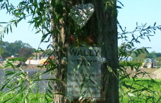aan Wally Tax is vervaardigd in de buurt van Rhoon, aan een boom