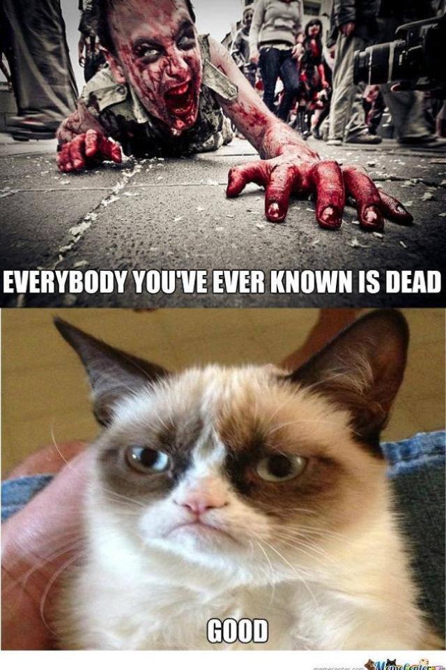 grumpy cat valentine's day massacre