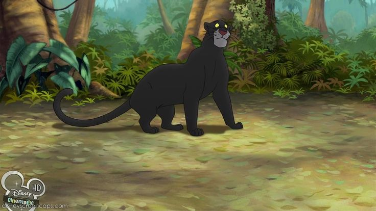 "Bagheera (Bob Joles) in ""The Jungle Book 2. #one of my ..."