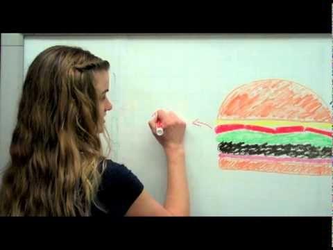essay hamburger method