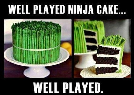 """Well played, Ninja Cake, well played."" For more hilarious memes and great humor visit www.bestfunnyjokes4u.com/lol-funny-cat-pic/"