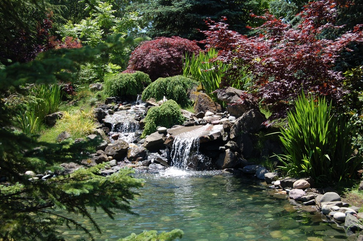 Forest Grove Backyard Burning : comdesignserviceswaterfeatures In and around Forest Grove