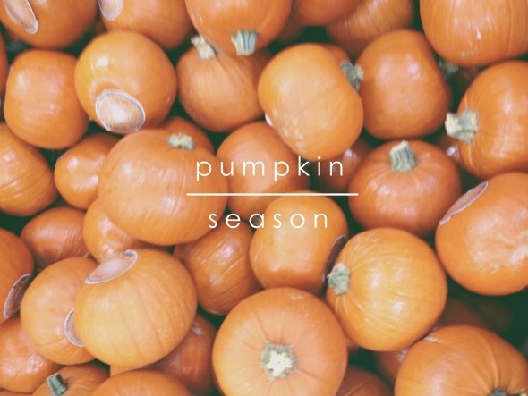 happy first day of fall!!