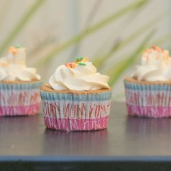 Gluten-Free Cardamom Cupcake - The hint of cardamom and the delicate ...