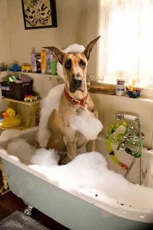 What?  But I love the bubbles...