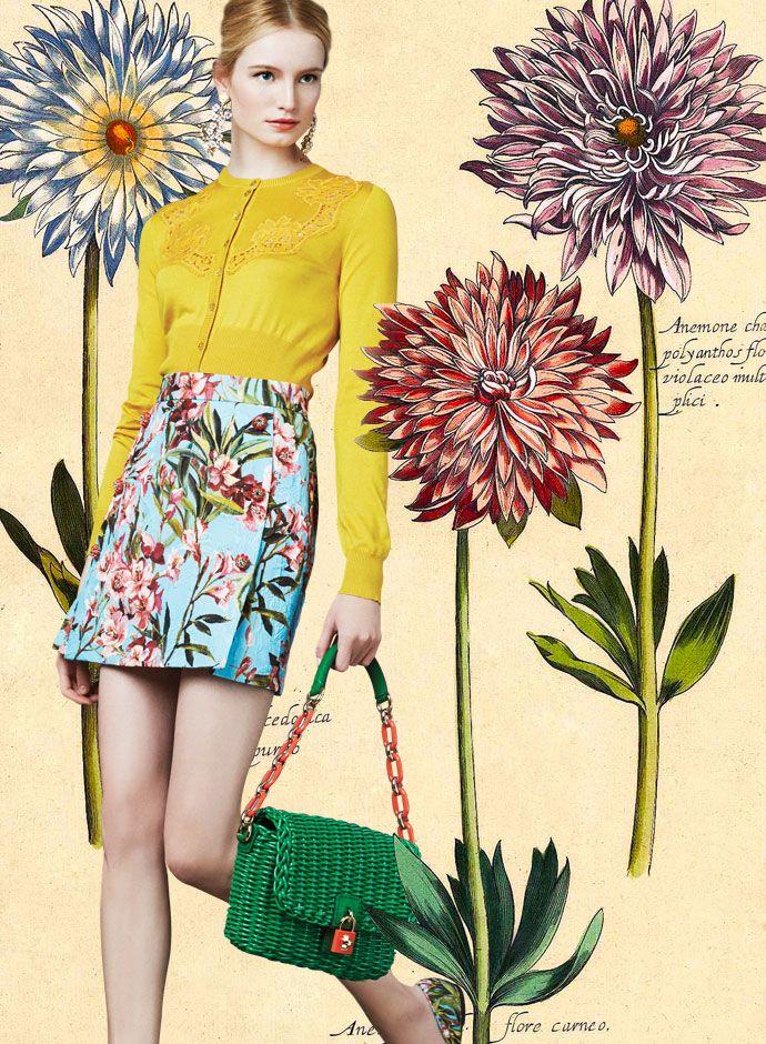 dolce gabbana spring sumer 2014