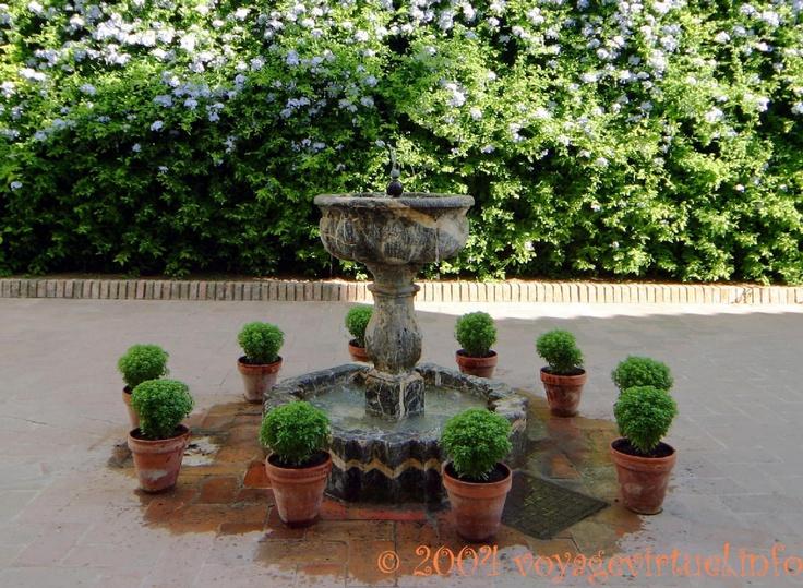 Composition sur fontaine dans le patio de los Jardineros, Palacio de Viana, Cordoba, España, Andalucia