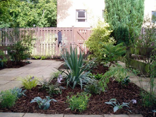 Tropical garden ideas in california photograph landscape i - Front garden ideas tropical ...