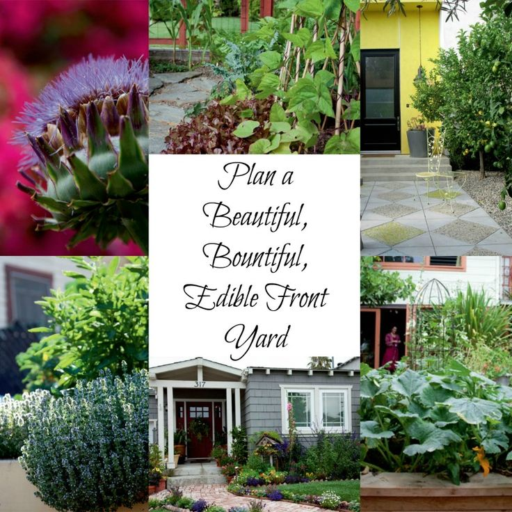 plan a beautiful bountiful edible front yard from timber press