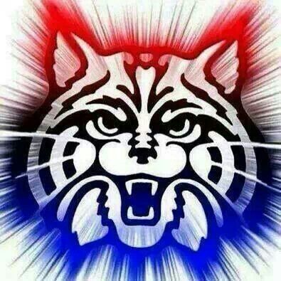 wildcats arizona