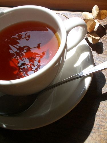 Cold-Fighting Ginger Cinnamon Tea Recipe | Sip Tea Healthy Drink Recipe