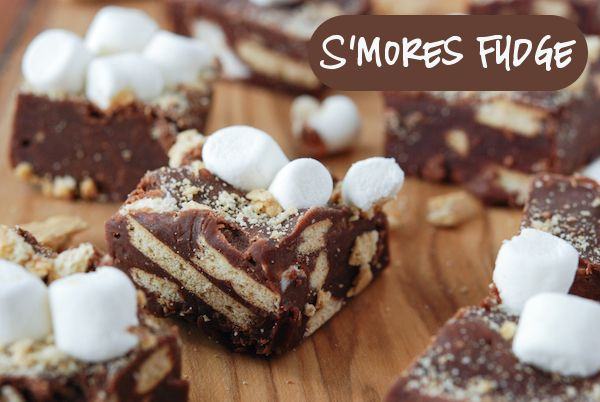 S'mores Fudge from www.thenovicechefblog.com