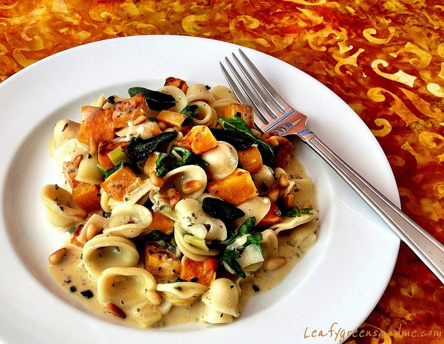 Roasted Butternut Squash Orecchiette Pasta with Sage Cream Sauce by ...