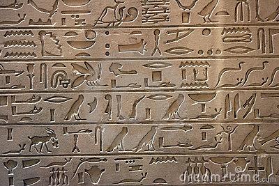 aa kuppikoko suomi24 egypti