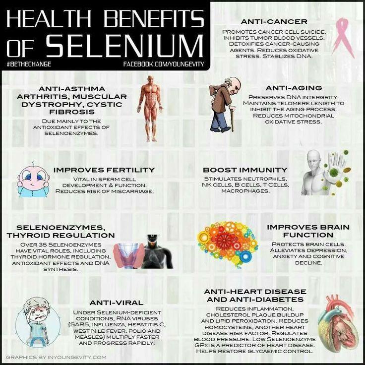 Uses Of Selenium Selenium | Health &amp...