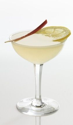 The Rhubarb Bee's Knees Cocktail Recipe with Rhubarb Bitters & Honey