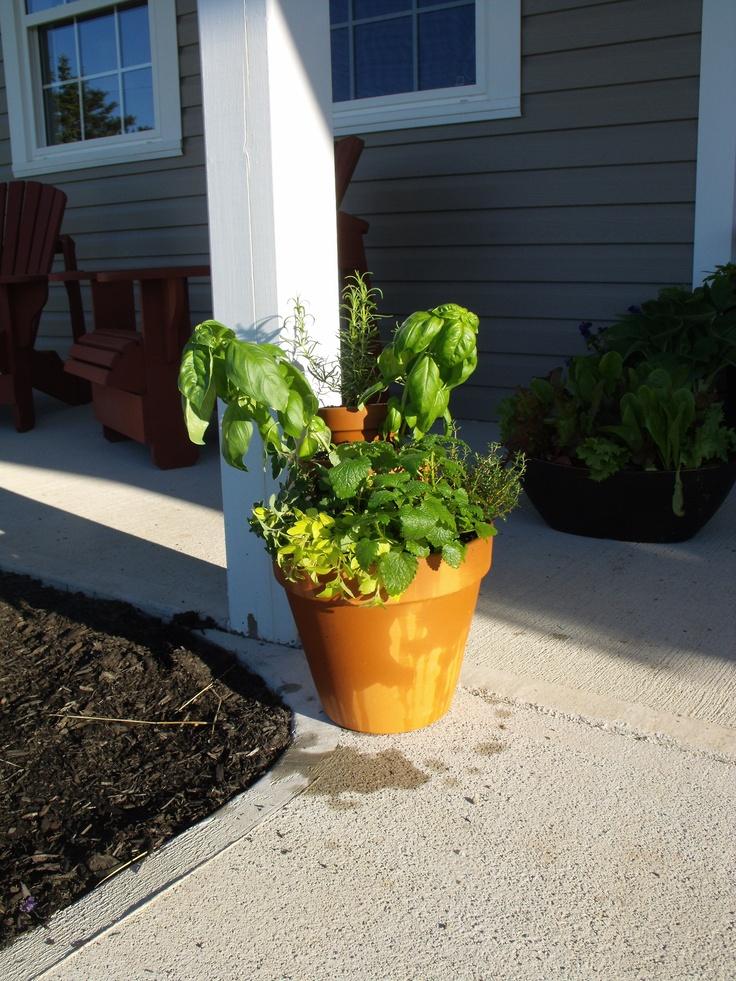 Tiered Herb Planter Garden Pinterest