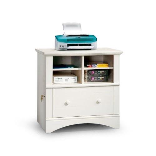 Sauder Harbor View Printer Stand and File Cabinet. It's expensive, but ...