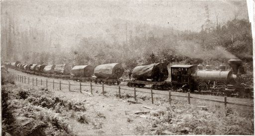 Redwood logging train in Freshwater, Humboldt County, California, before 1900. Photo by Ericson of Arcata.
