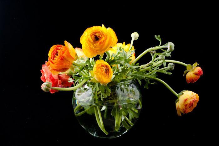 6193ranunculus_flowers.jpg (700×466)