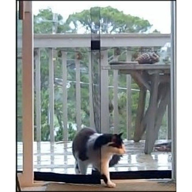 Pin by mary jane turner on for my pups pinterest for Bug off instant screen door