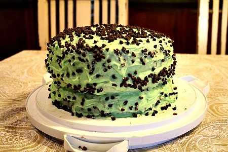 Andes Mint Chocolate Chip Cake | Mint Blog Hop | Pinterest