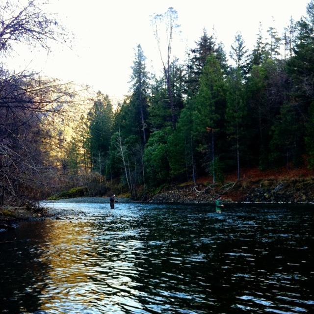 Trinity river fly fishing pinterest for Trinity river fishing spots