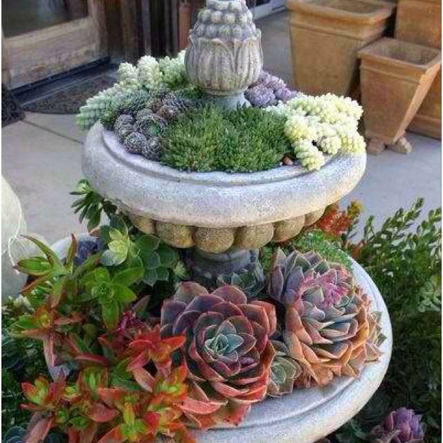 Water Fountain Turned Into A Planter Garden Inspirations