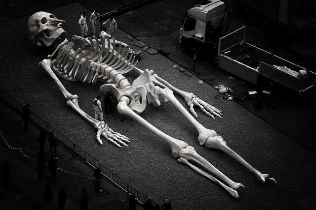 Giant Skeleton | 'DEM ...