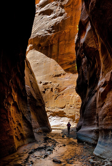 Orderville Canyon in Zion National Park, Utah
