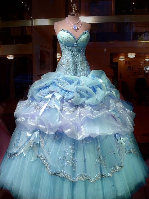 real life cinderella gown