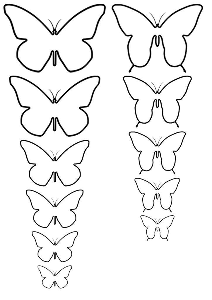 Бабочки трафареты своими руками 278
