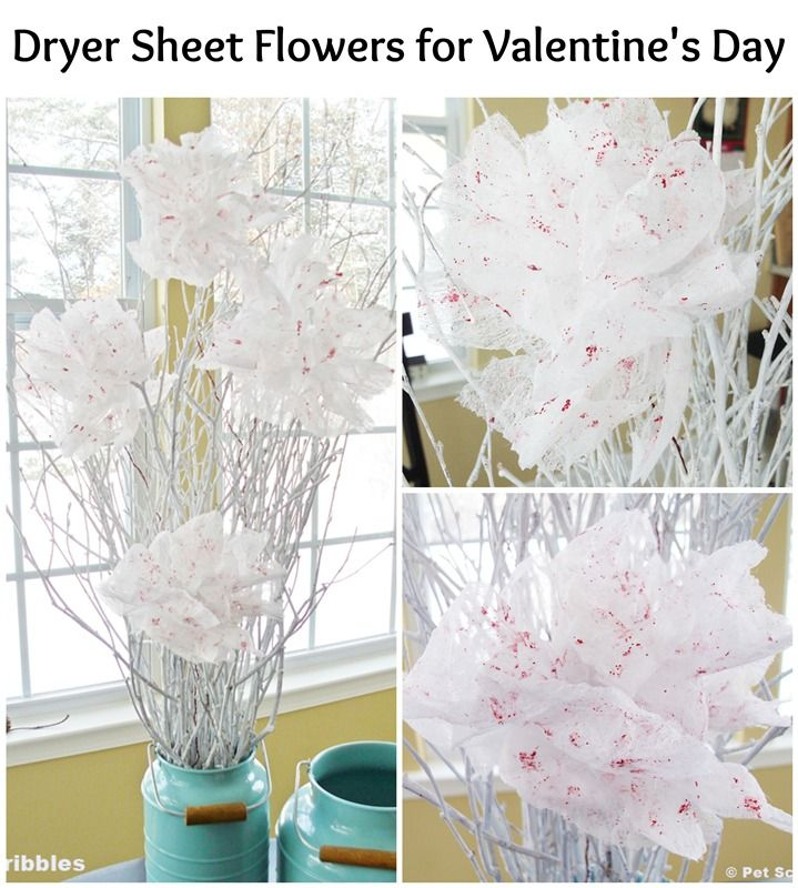 flowers for valentine's day images