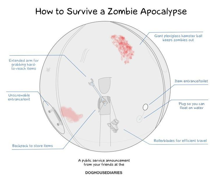 How to survive a zombie apocalypse.