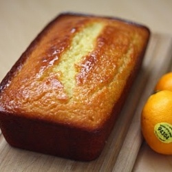 Meyer Lemon Yogurt Cake | Recipes - Desserts/Cakes/Cookies | Pinterest