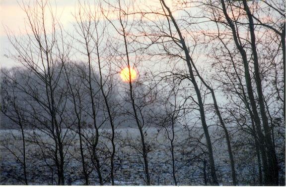 Winter Sun - North Dakota