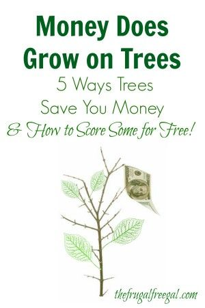 Pin by joan collins on finances pinterest - Money saving tips in gardening ...