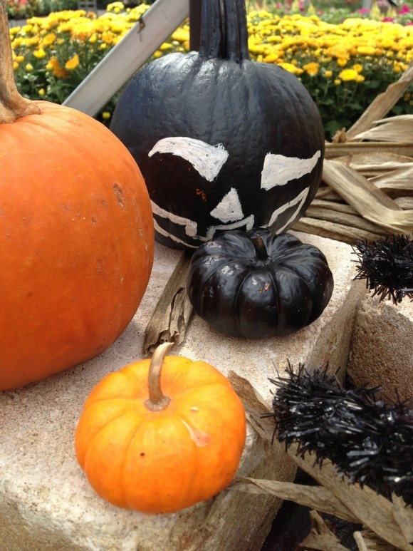 Painted Pumpkin Ideas Halloween Pinterest