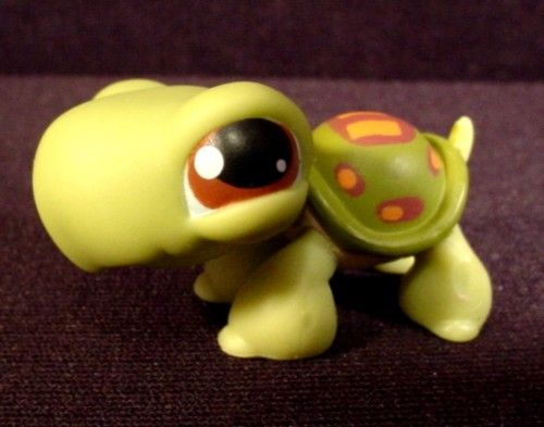 littlest pet shop turtle 119 2004 hasbro littlest pet