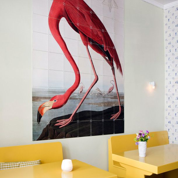 Birds Of America Flamingo/ Modular Wallpaper