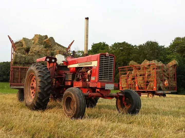 Ih 856 Tractor : Farmall related keywords long tail
