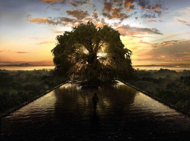 The Fountain Tree