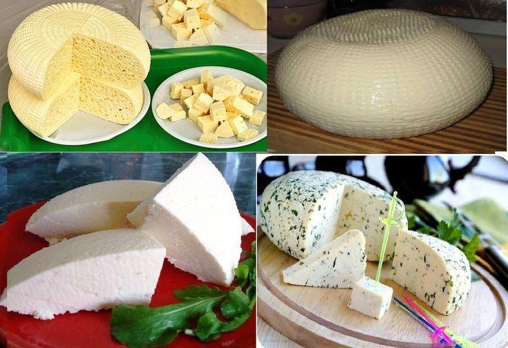 Сыр с домашнего молока в домашних условиях