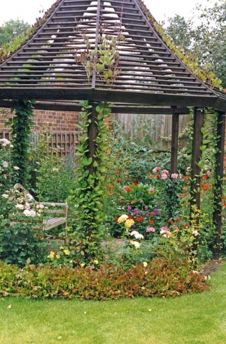 Pergola kit - like the relative lightness & openness of this one.