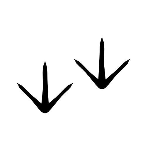 Chicken footprints free icon