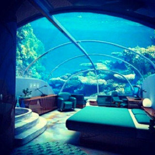 Aquarium Bedroom Home Decor Ideas Pinterest