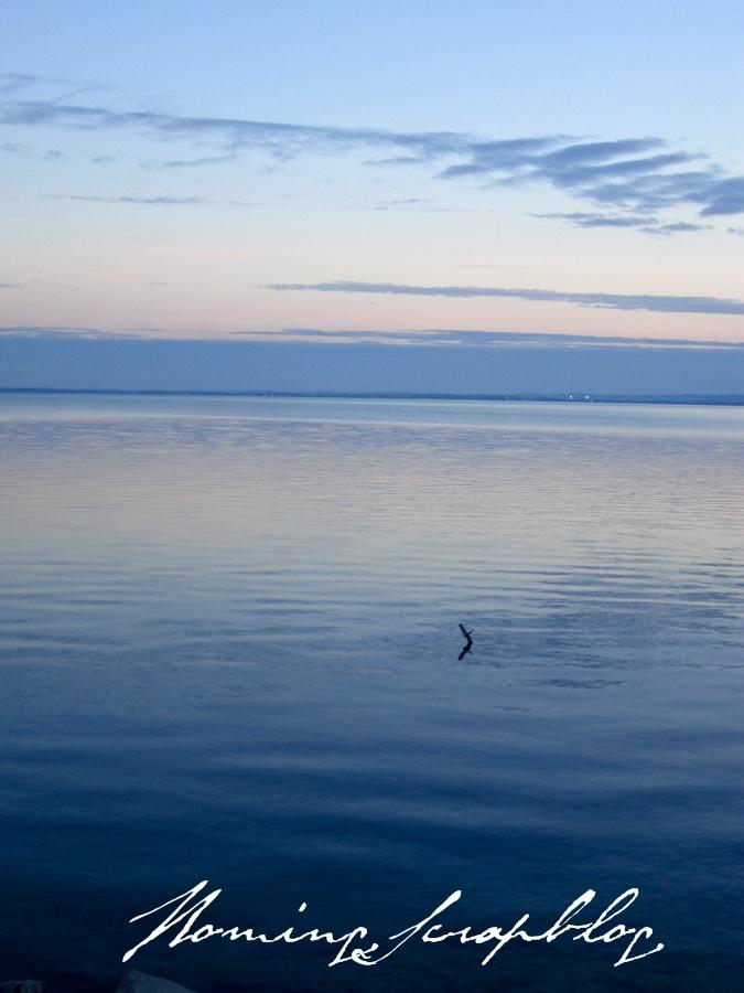 Lake Balaton on the first day of winter | Hungary | Pinterest