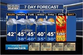 the forecast for d-day book